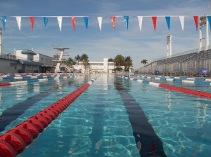 85 and 86 fort lauderdale aquatic complex 40 pools for International swimming hall of fame pool